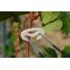 Trådsamler (bioclip) 500 gr.
