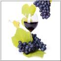 Blå druer
